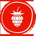 exportation de fruits primeurs et legumes frais fruits et legumes bio tunisie