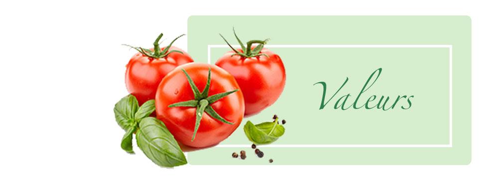 geofresh production et exportation fruits légumes primeurs el hamma gabes tunisie